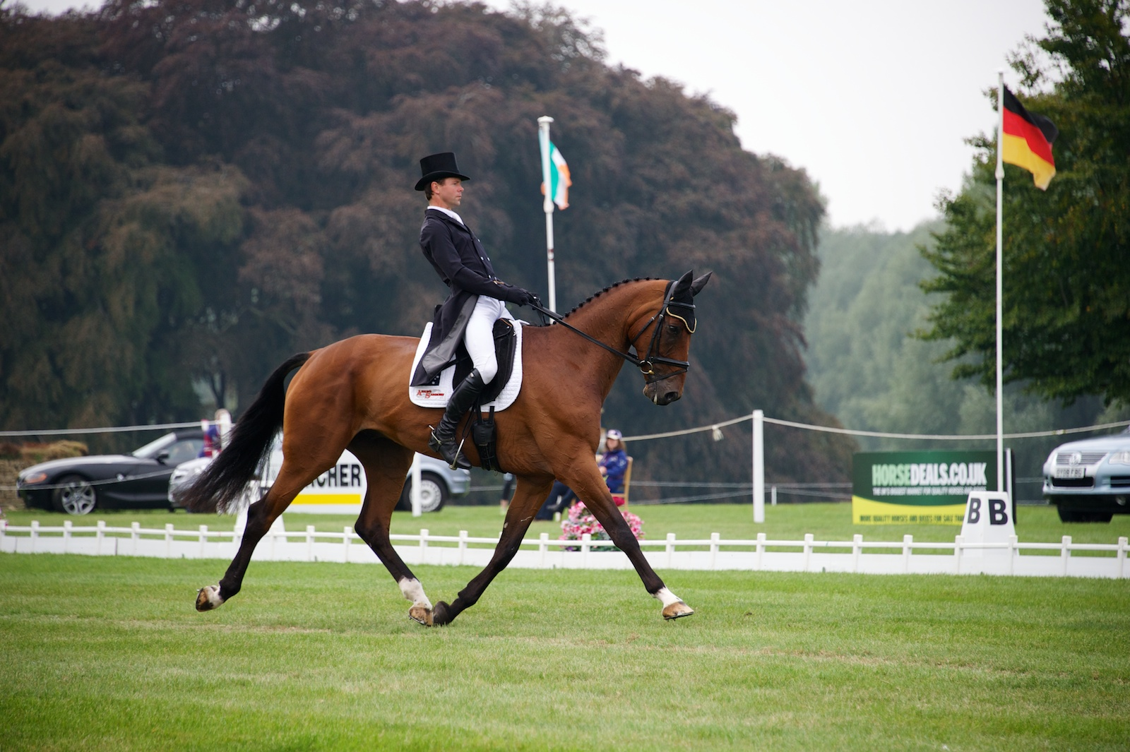 Kevin McNab & Casperelli - 7th After Dressage In The CIC***