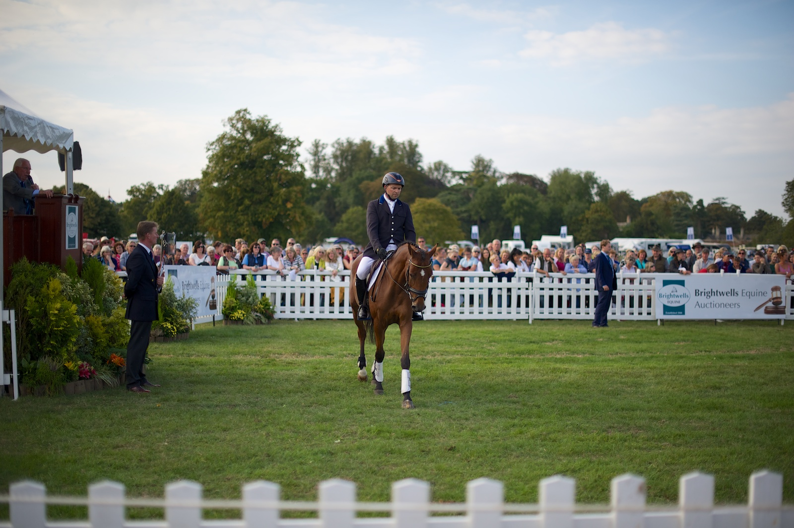Brightwells Horse Auction At Blenheim